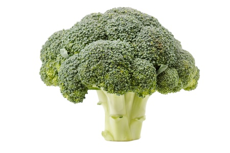 Fresh Raw Green Broccoli Stock Photo - 9106546