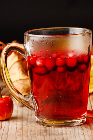 winter drink  photo