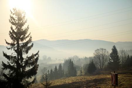 carpathian: Carpathian Mountains  Stock Photo