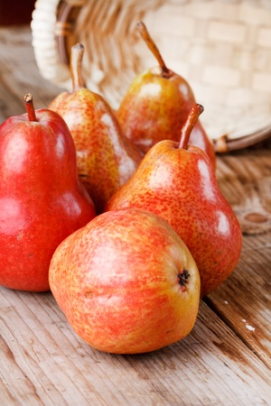 fresh pears Stock Photo - 9562004