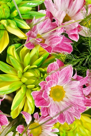 bouquet of colorful flowers  Stock Photo - 10460641