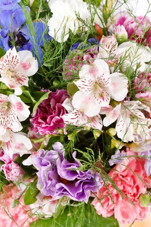 bouquet of colorful flowers  Stock Photo - 10585226