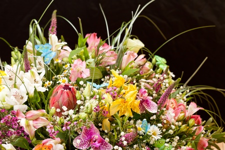 bouquet of colorful flowers Stock Photo - 10848071