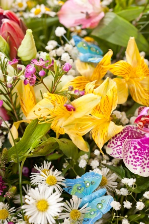 bouquet of colorful flowers  Stock Photo - 10848066