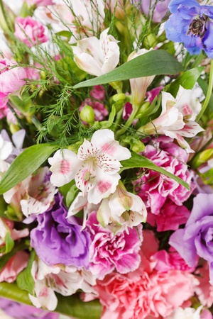 bouquet of colorful flowers Stock Photo - 10848048