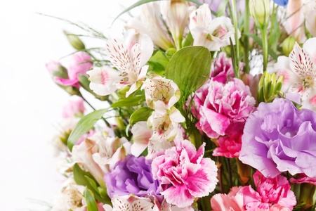 bouquet of colorful flowers  Stock Photo - 10966102
