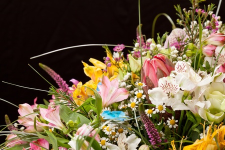bouquet of colorful flowers  Stock Photo - 10976099