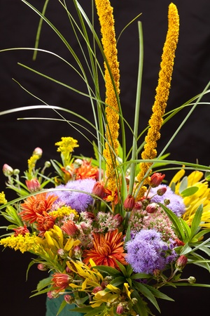 bouquet of colorful flowers Stock Photo - 11134833