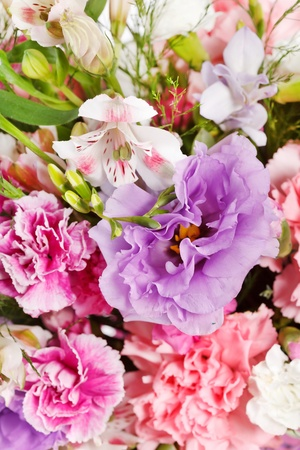 bouquet of colorful flowers  Stock Photo - 11315334