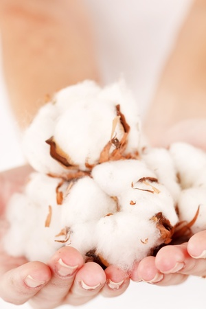 cotton flower: young woman with cotton flowers Stock Photo