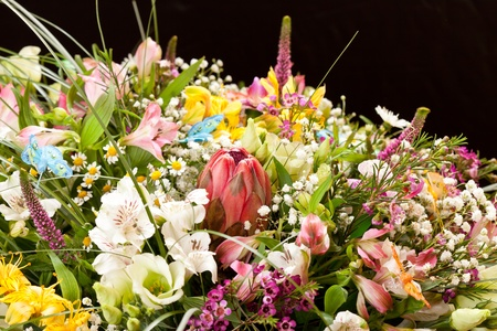 bouquet of colorful flowers  Stock Photo - 11772075