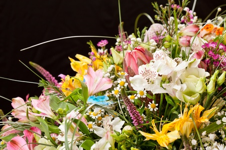 bouquet of colorful flowers Stock Photo - 13239808