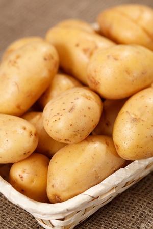 fresh potatoes photo