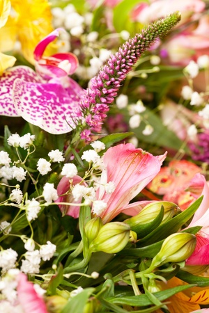 bouquet of colorful flowers Stock Photo - 13476030