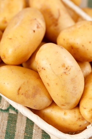 fresh potatoes Stock Photo - 13476032