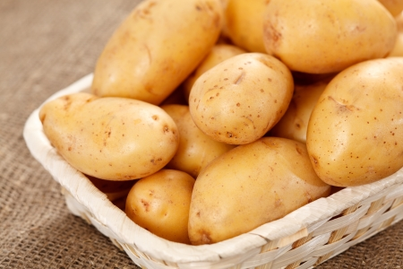 fresh potatoes photo