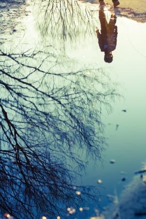 Tree Reflecting on Water Stock Photo - 14023647