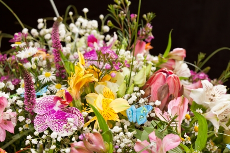 bouquet of colorful flowers Stock Photo - 14468792