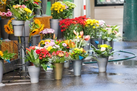 flower shop: flowers at the flower market  Stock Photo