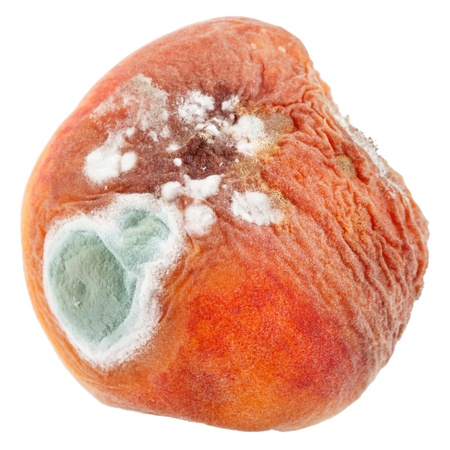 mustiness: mould on peach