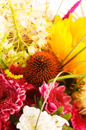bouquet of colorful flowers Stock Photo - 15046175