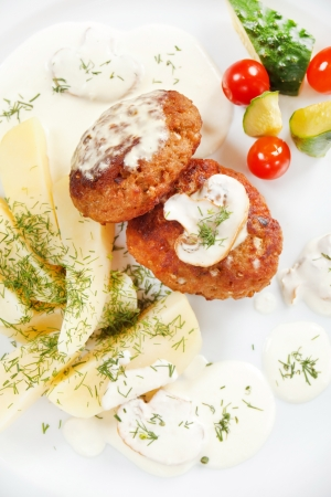 cutlets with fresh vegetables Stock Photo - 15504107