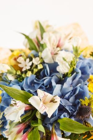 nice flowers Stock Photo - 15504118