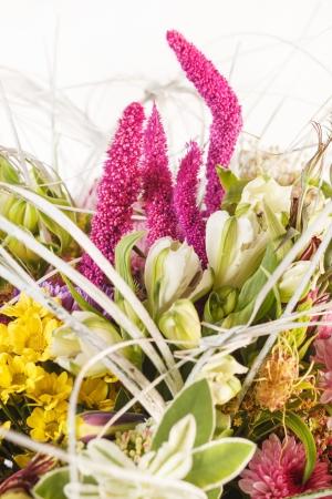 nice flowers Stock Photo - 15240988