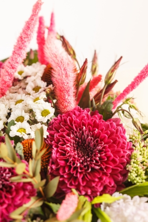 bouquet of colorful flowers Stock Photo - 15240985