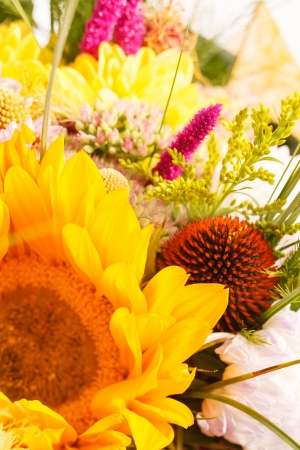 bouquet of colorful flowers Stock Photo - 15341170
