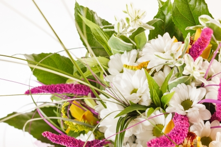 nice flowers Stock Photo - 15451280