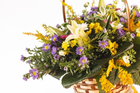 nice flowers in the basket Stock Photo - 15675052