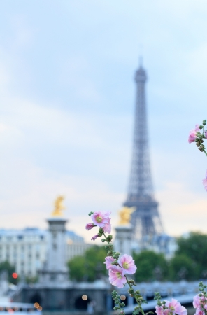 spring Eiffel tower in Paris  photo