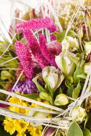 nice flowers Stock Photo - 15756456