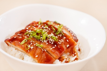 eel on rice,unaju, japanese unagi cuisine photo