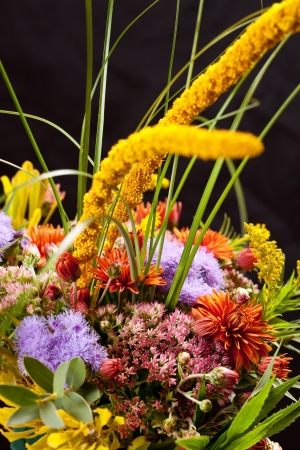 bouquet of colorful flowers Stock Photo - 17086548