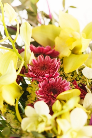 nice flowers Stock Photo - 17086420