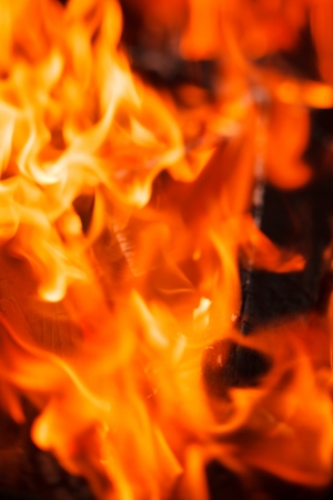 warmness: Fire in fireplace