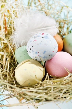 Easter chocolate eggs in the nest  photo