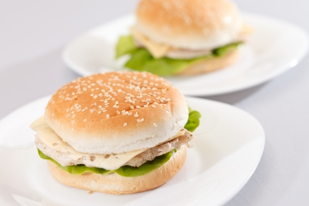 chicken sandwich: chicken sandwich  Stock Photo