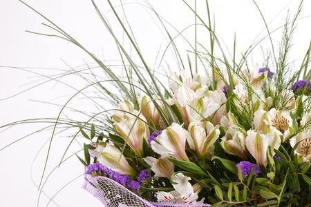 lirio blanco: hermosas flores Foto de archivo