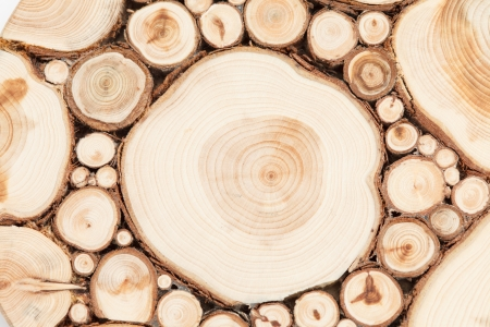 top year: wood background