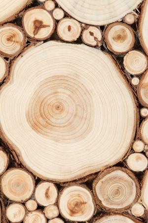 materiales de construccion: madera
