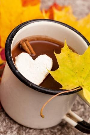 chocolat chaud: chocolat chaud