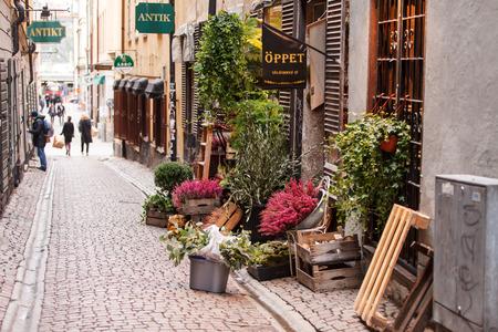 flower shop:  small flower shop