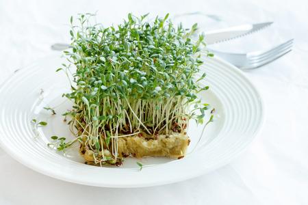 berros: Berros verde fresco en el plato