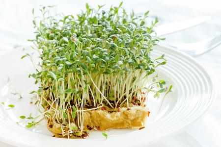 berros: Berros verde fresco en la placa