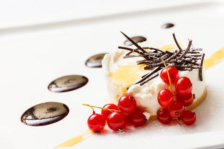 Cheesecake with chocolate sauce photo