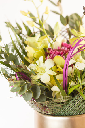 ferns and orchids: nice flowers Stock Photo