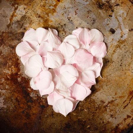 花びら: heart from flower petals 写真素材
